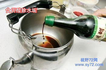 家政服务人员需了解,电水壶水垢去除方法