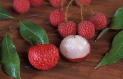 夏季吃荔枝應該注意不要過量